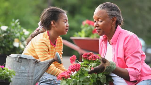 ms pan grandmother and granddaughter (8-9) planting flowers in front of home, richmond, virginia, usa - vattna bildbanksvideor och videomaterial från bakom kulisserna