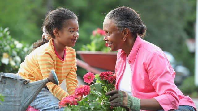 MS Grandmother and granddaughter (8-9) planting zinnia flowers in front of home, Richmond, Virginia, USA