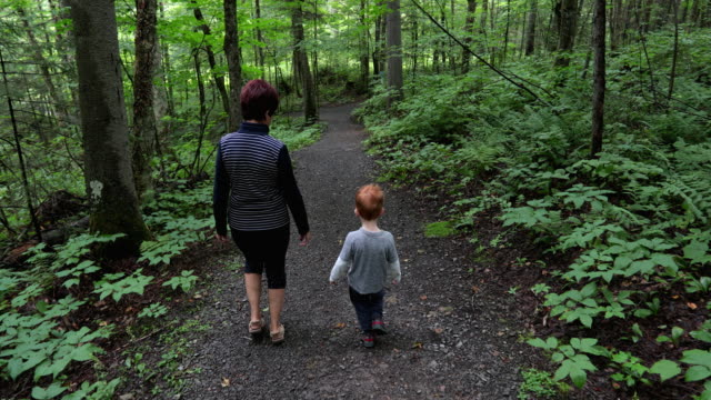 grandmother and grandson hiking in the forest in summer - grandson stock videos & royalty-free footage