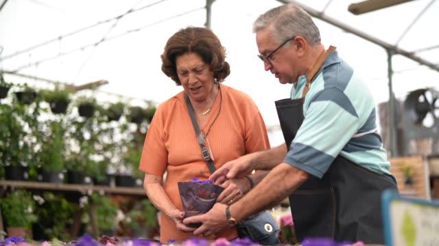 vídeos de stock, filmes e b-roll de avó comprando flores no mercado - exposição