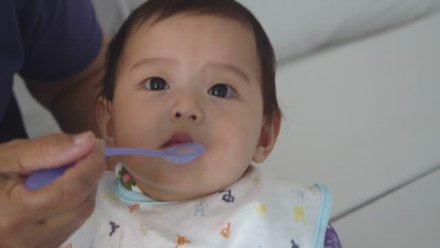 vídeos de stock, filmes e b-roll de avó que alimenta a menina do bebê de 7 meses - comida de bebê