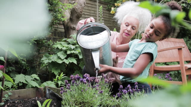 vidéos et rushes de grandmother helping grandchild water the garden - famille multi générations