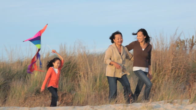 ws ts grandmother, mother and young daughter with kite walking on beach dunes / eastville, virginia, usa - arm around stock videos & royalty-free footage
