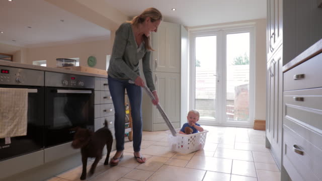 grandmother playing with grandson and pet dog - mischief stock videos & royalty-free footage