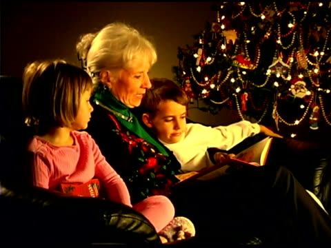 grandmother reading book to grandchildren - see other clips from this shoot 1407 stock videos and b-roll footage