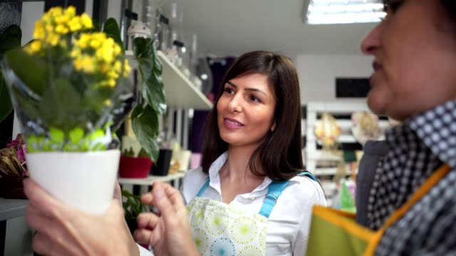 grandmother teaching a granddaughter at a flower shop - trainee stock videos & royalty-free footage