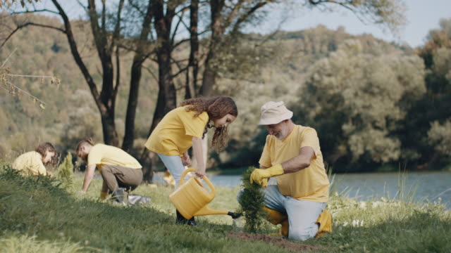 grandpa and little girl watering a plant - yellow stock videos & royalty-free footage
