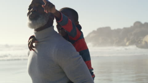 grandpa, look over there! - grandson stock videos & royalty-free footage