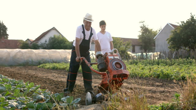 Grandparent and grandson mowing and walking, agricultural activity