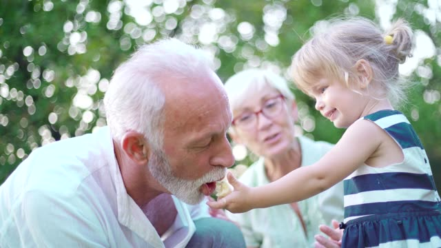 vídeos y material grabado en eventos de stock de abuelos y nieta en el patio trasero - eventos de la vida