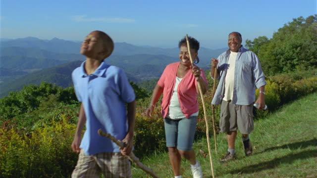 MS Grandparents and grandchildren hiking against mountainous landscape / Asheville, North Carolina, USA