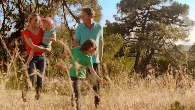grandparents and grandchildren or older parents and children walking in countryside - vier personen stock-videos und b-roll-filmmaterial