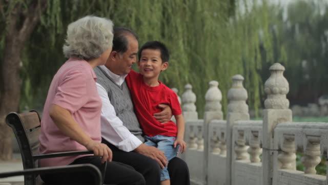 vídeos y material grabado en eventos de stock de ms grandparents sitting with their grandson on park bench / china - en el regazo