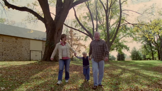vídeos y material grabado en eventos de stock de grandparents swinging boy between them while walking on lawn - nieta