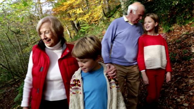 spaziergänge in den wäldern von großeltern mit ihren enkelkindern - enkel stock-videos und b-roll-filmmaterial