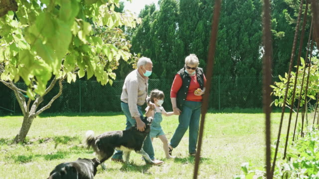 grandparents walking the garden with granddaughter during pandemic - charity benefit stock videos & royalty-free footage