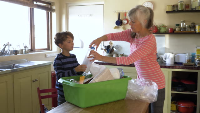 stockvideo's en b-roll-footage met grandson helping to sort recycling with his grandmother - organisatie