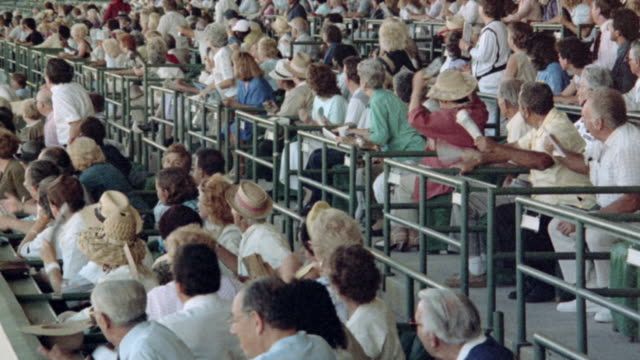 grandstand spectators stand and wave as they watch a horse race. - binoculars stock videos & royalty-free footage