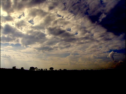 Grantchester silhouetted against sky at dusk Cambridgeshire