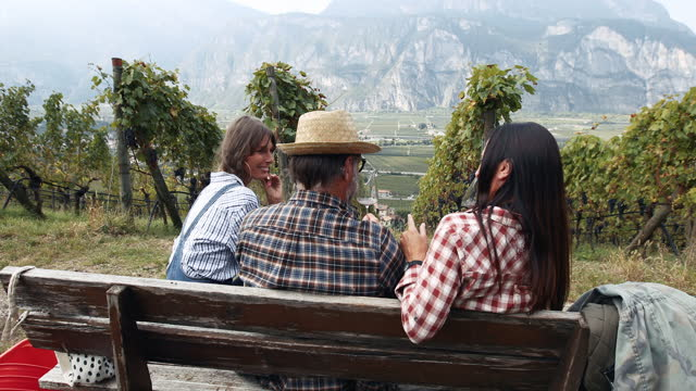 grape harvesting for wine making storytelling: italian vendemmia in trentino - farm worker stock videos & royalty-free footage