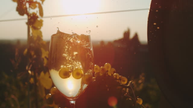 vídeos de stock e filmes b-roll de slo mo grapes falling into a glass of wine - juicy