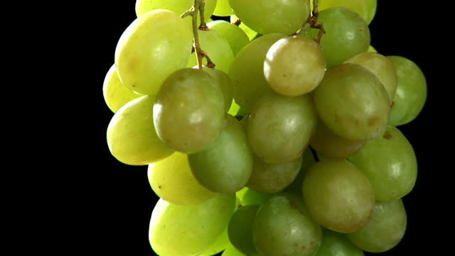 hd: grapes rotating - grape stock videos & royalty-free footage
