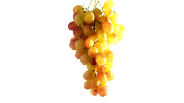 grapes spinning and rotating isolated on white background food suspended in the air - grape stock videos & royalty-free footage