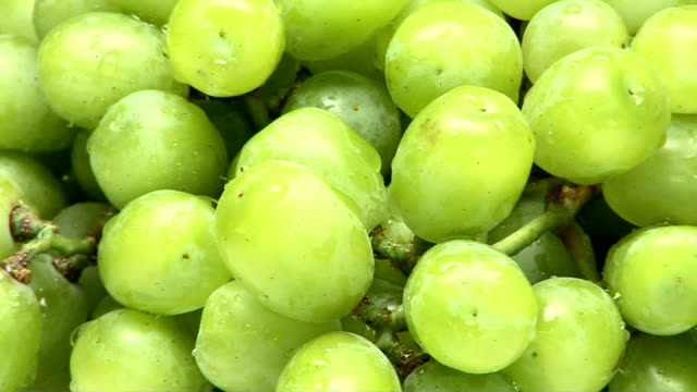 grapes - ぶどう点の映像素材/bロール