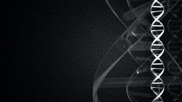 4k graphic dna strand on dark, digital background - chromosome stock videos & royalty-free footage