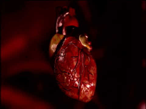 Graphic of beating human heart suspended against red and black background