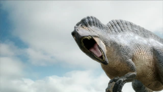 a graphic shows a ferocious dinosaur roaring. - animal head stock videos & royalty-free footage