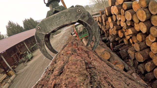pov grapple moving a log at a sawmill - industria forestale video stock e b–roll
