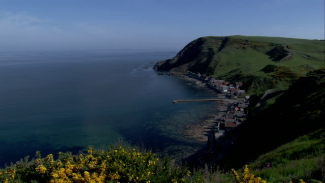 grass and wild-flower covered cliffs overlook the village of crovie, scotland. available in hd. - クロヴィー点の映像素材/bロール