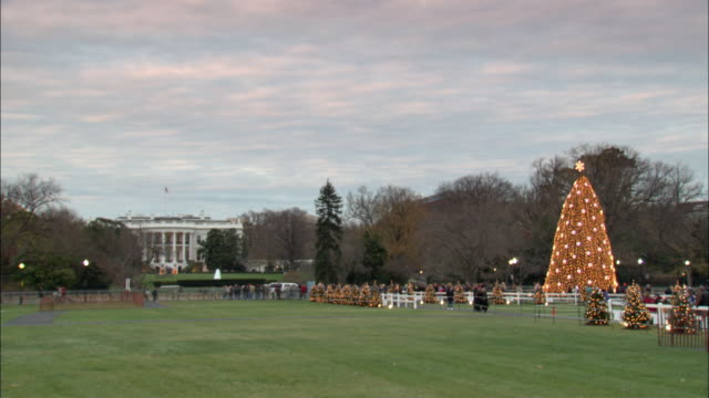 ws grass field hosting a large, illuminating christmas tree with the white house in the distance / washington, d.c., united states - stationary process plate stock videos and b-roll footage