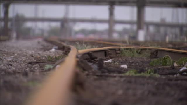 grass grows near rusty tracks in a railroad yard. - bolt stock videos & royalty-free footage