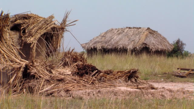 ms grass huts in field, tamale, ghana - grass hut stock videos & royalty-free footage