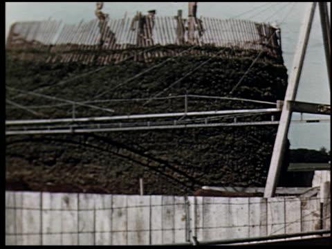 grass is gold - 12 of 13 - andere clips dieser aufnahmen anzeigen 2173 stock-videos und b-roll-filmmaterial