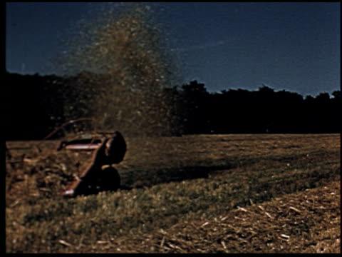 grass is gold - 13 of 13 - andere clips dieser aufnahmen anzeigen 2173 stock-videos und b-roll-filmmaterial