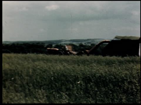 grass is gold - 2 of 13 - andere clips dieser aufnahmen anzeigen 2173 stock-videos und b-roll-filmmaterial
