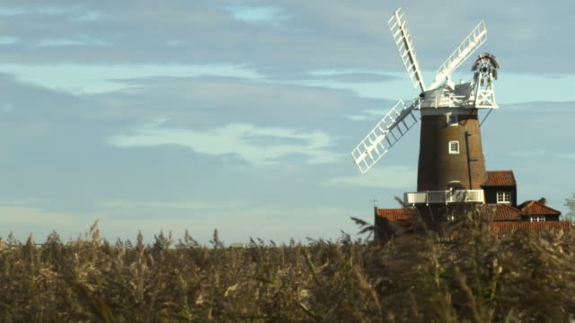 slo mo cu grass on field with windmill in background, cley-next-the-sea, norfolk, united kingdom - mill stock videos & royalty-free footage
