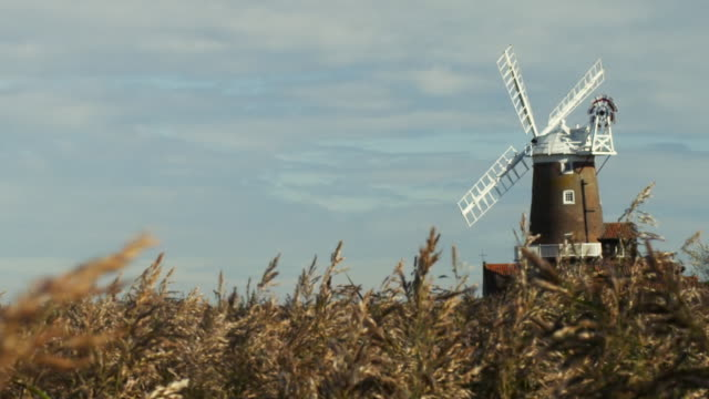 cu zo grass on field with windmill in background, cley-next-the-sea, norfolk, united kingdom - mill stock videos & royalty-free footage