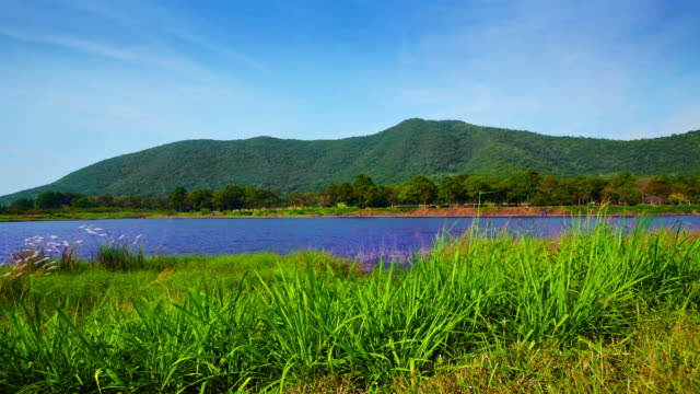 Grass, pond and mountain