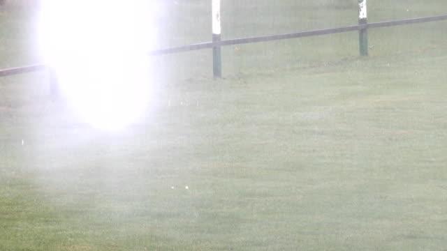 grass sprinkler - vattenspridare bildbanksvideor och videomaterial från bakom kulisserna