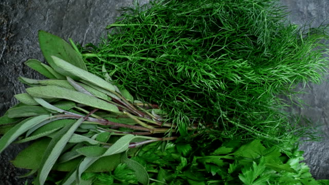 grass vegetable and herbs over black - parsley stock videos and b-roll footage