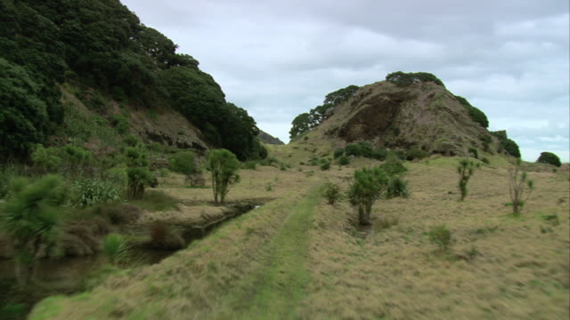AERIAL Grass, vegetation, and mountain stream surrounded by rock formations / Otago, New Zealand
