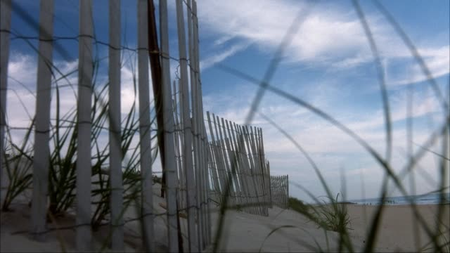 grasses rustle in the breeze near a fence on a beach. - fence stock videos & royalty-free footage