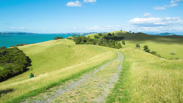 grassland and farm / new zealand - cumulus stock videos & royalty-free footage