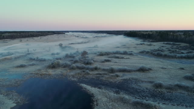 grassy swamp and a small river in chippewa national forest, minnesota, in the early cold morning in spring, with fog and haze. aerial drone video with the forward cinematic camera motion. - minnesota stock videos & royalty-free footage