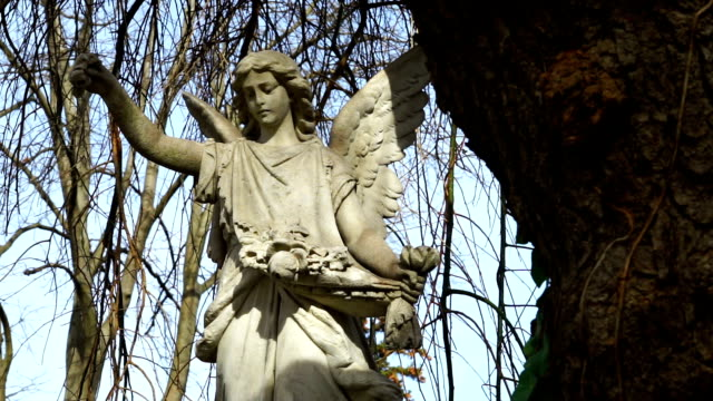 Grave Angel Under Weeping Willow