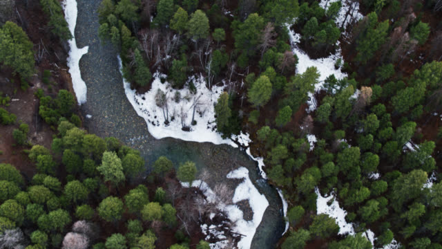 grave creek, kootenai national forest, montana - top down aerial view - named wilderness area stock videos & royalty-free footage